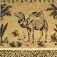 Camel New 303 001